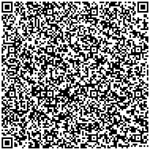 QR Code for contact Data Dominik Browsinki